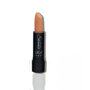 AILY Light Nude Concealer Stick 05