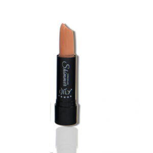 AILY Medium Nude Concealer Stick 06