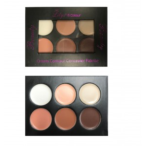 Lilyz 6 Colour Cream Contour Concealer Palette – Dark