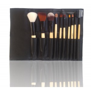 LyDia 10pcs Eco-Friendly Luxury Natural Wooden Makeup Brush Set