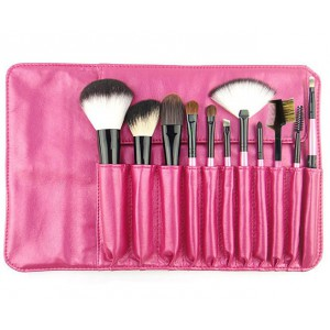 LyDia 11pcs Hot Pink Makeup Brush Set